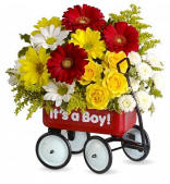 Welcome New Baby Flowers In A Wagon