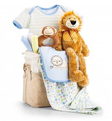 Baby Boy Gift Basket 49 95
